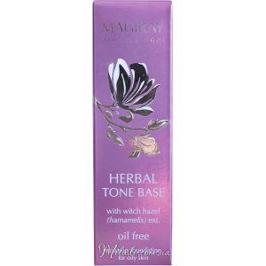 База тональная для жирной кожи, 30мл - Magiray Herbal Tone Base