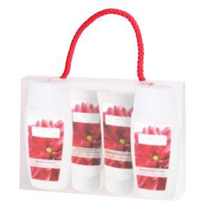 Дорожный набор для нормальной кожи, 50мл+50мл+30мл+30мл - Ryor Travel Packing Normal Combination Skin
