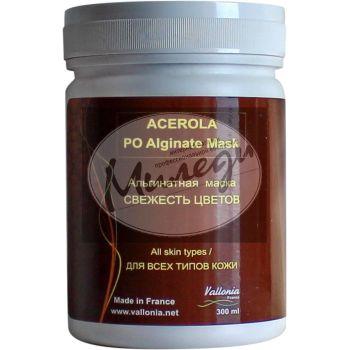 Ацерола, 120гр - Vallonia Acerola Peel off Alginate Mask